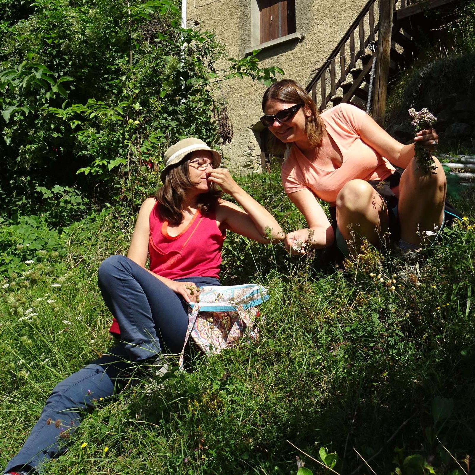Découverte sensorielles des plantes sauvages comestibles