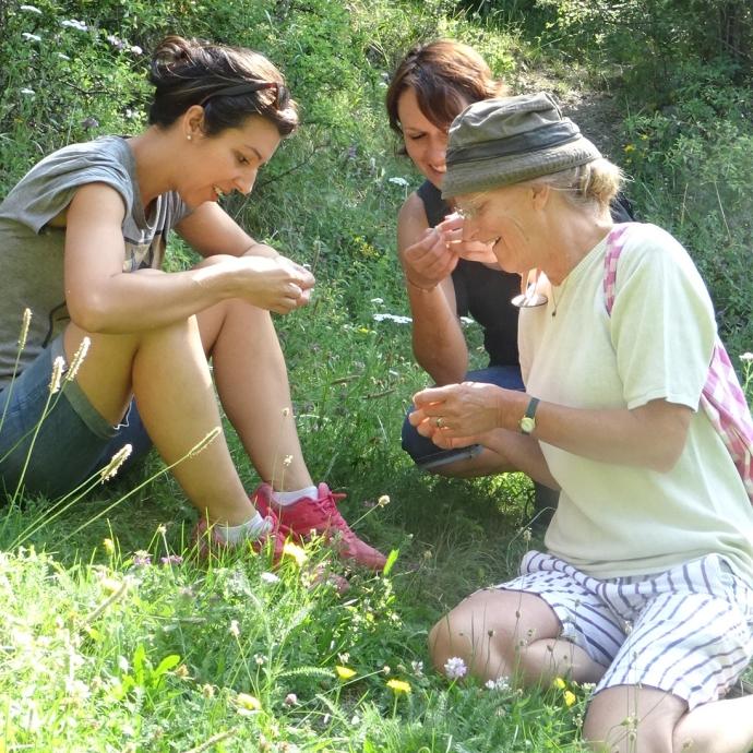 Découverte sensorielle des plantes sauvages comestibles