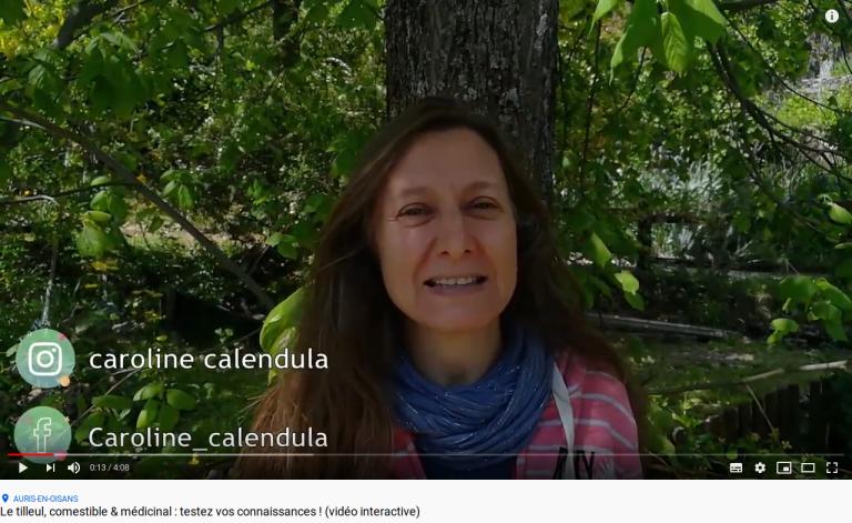 Capture d'écran de la vidéo : le tilleul, comestible & médicinal : testez vos connaissances ! (vidéo interactive)