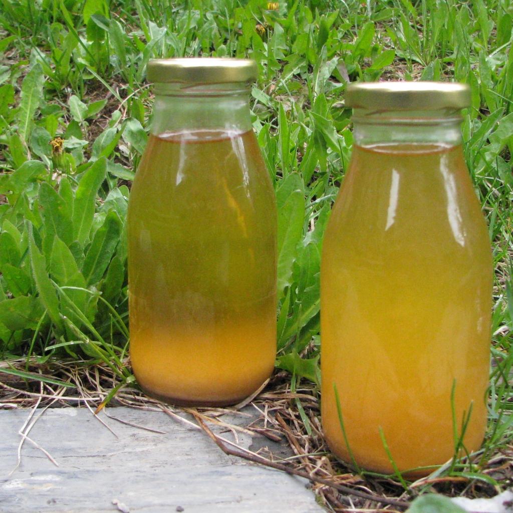 Sirop préparé à base de plante sauvage