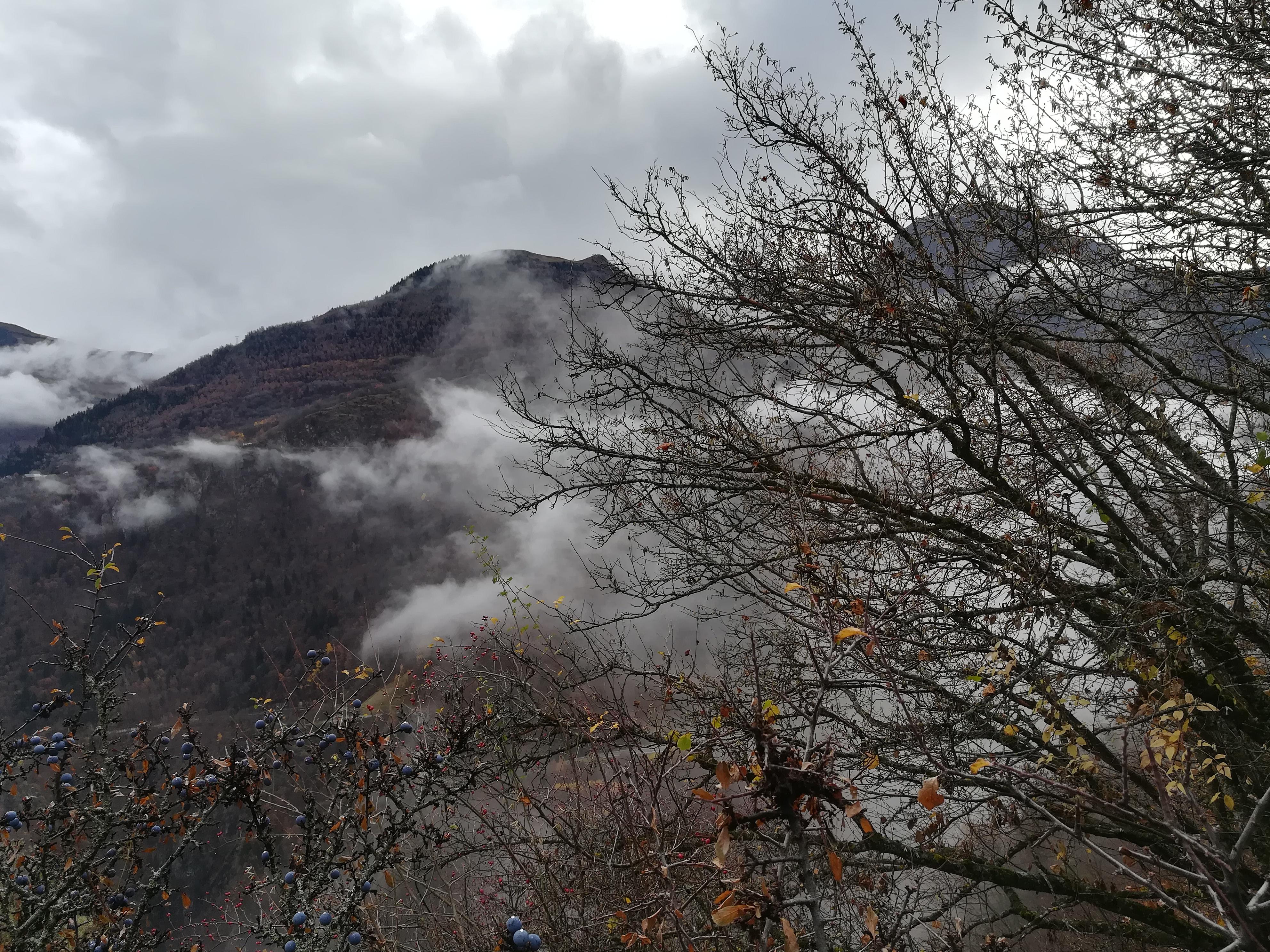 Vue de montagne en automne